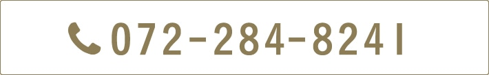 072-284-8241